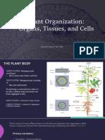 Plant Organization(3)