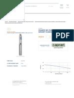 Pompe de Forage Caprari Désert E4XED60-10 T - En Vente Sur Technipompe