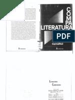 Tania Franco Carvalhal  - Literat.pdf
