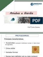 Aula 3 - Introdução protozoários. Amebas e Giardia