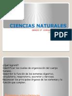 CIENCIAS NATURALES CLASE 13,14,15,16.pptx