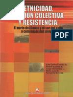 Etnicidad, acción colectiva y resistencia El norte del cauca y el sur del valle a comienzos del sigloXXI