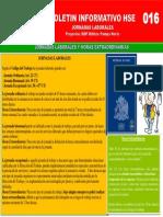 016 BOLETIN INFORMATIVO - JORNADAS LABORALES [Autoguardado]