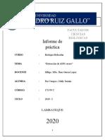 INFORME III - Extracción de ADN casero