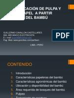 Ponencia-Pulpa y papel 2011-bambu