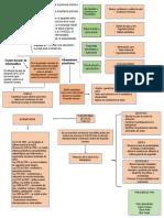 ACTIVIDAD 3  PLAN DECENAL DE SALUD PUBLICA Medicina Preventiva
