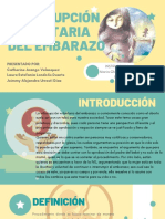 INTERRUPCIÓN VOLUNTARIA DEL EMBARAZO