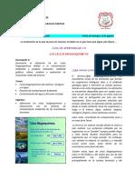 GUIA # 9 CICLOS BIOGEOQUÍMICOS