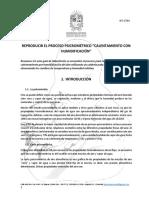 GL-CT04 guia termo.pdf