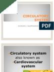 CIRCULATORY sys