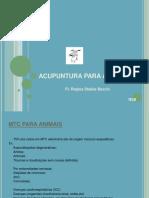ACUPUNTURA PARA ANIMAIS.pdf