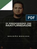 Ebook - O Processo de Maturidade - Brunão Morada.pdf