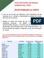Utilizacion y Conservación de forrajes (sem 5 y 6).pptx