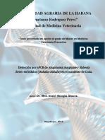 Obregon-D-2012-Deteccion-por-nPCR-de-Anaplasma-marginale-y-B-bovis-en-bufalos-Dissertação.pdf