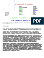 127536526-Procese-Cognitive.doc