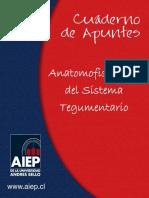 EEI101_ANATOMOFISIOLOGIA DEL SISTEMA TEGUMENTARIO