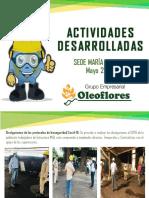 Actividades Mayo 2020 SST (1).pdf
