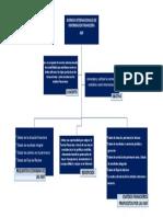 MAPA CONCEPTUAL DE LAS NIIF.pdf