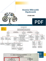 anemia MH blood loss.ppt