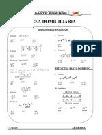 TAREA DOMICILIARIA ALGEBRA 1( S.D )