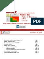 Guide Amdec