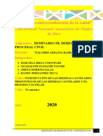 EL PROCESO CAUTELAR.docx
