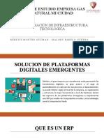 PLATAFORMAS DIGITALES EMERGENTES