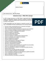 Estudo de Caso - PMO CPFL Energia