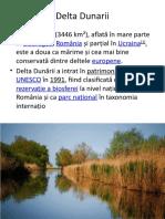 Delta-Dunarii.pptx