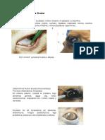 Citologia Ocular.docx