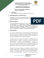 TERMINOS DE REFERENCIA PARA CONTADOR