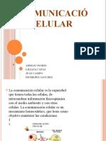 Comunicación celular.pptx