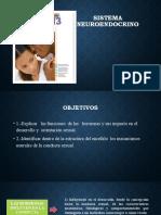 Clase Sistema Neuroendocrino.pptx
