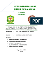 MACROFAUNA.docx