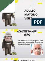 ADULTO MAYOR CLASIFICACIÓN.pdf