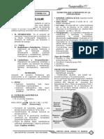 sm 4.pdf