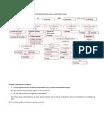 ACTIVIDAD 2 NATURALES.docx
