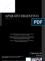 APARATO DIGESTIVO EQUINOS