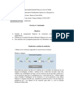 PRACTICA 6 Combustion.docx