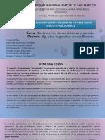 Cierre de mina-Selene Marco iv.pdf
