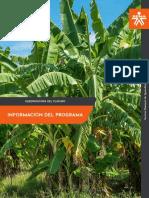 Informacion_Agroindustria_del_Platano