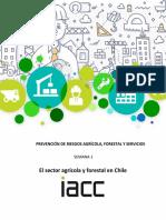 PREVENCIÓN DE RIESGOS AGRÍCOLA, FORESTAL Y SERVICIOS.pdf