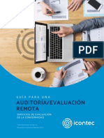 DOC-Auditorias-Remotas-2020 (1)