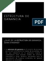 ESTRUCTURA DE GANANCIA PDF.pdf