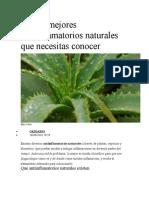 antiinflamatorios naturales