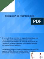 FISIOLOGÍA DE PARATIROIDES