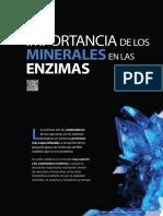 relacion  entre  minerales  y  enzimas[156]