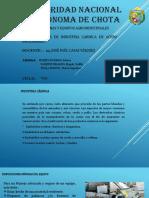 DIAPOSITOVAS DE MAQUINAS Y EQUIPOS EMBUTIDOS.pptx