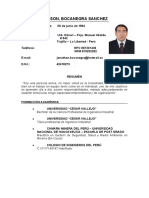 Curriculum Jonathan Bocanegra Sanchez - Simple 2019