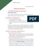 Apunte del derecho penal I-terminado.docx
